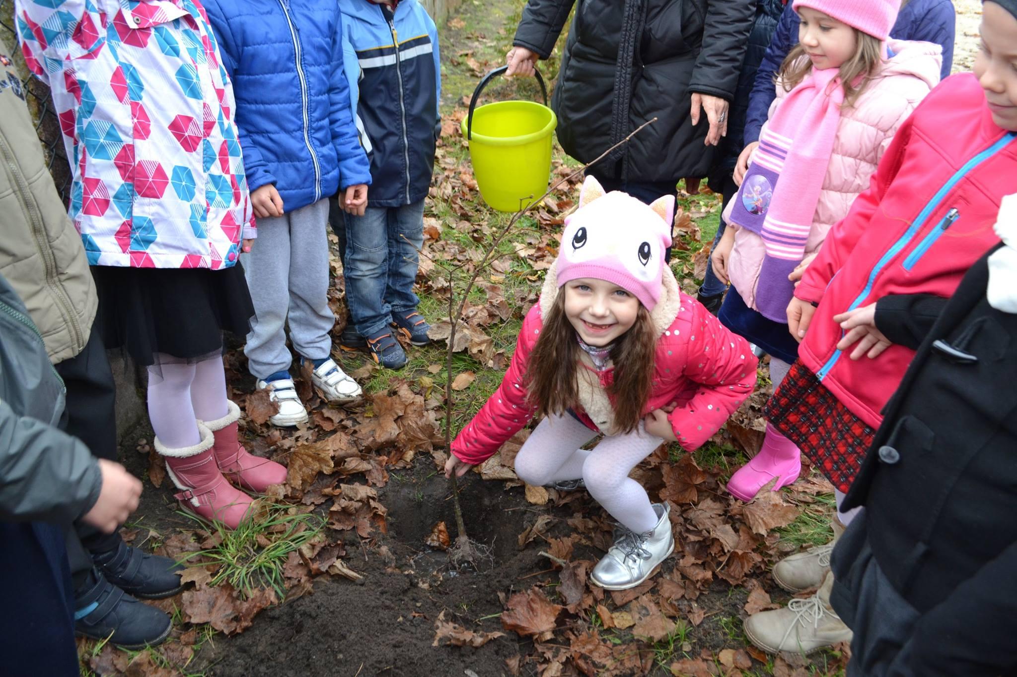 Sadzenie drzewka przez Muchomorki